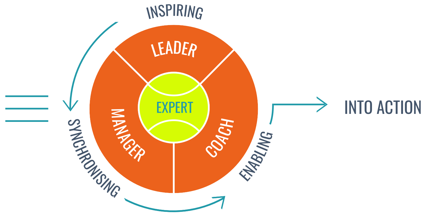 Mentally Fit - Key model Roles of a Leader